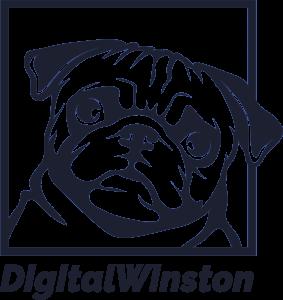 digitalwinston logo